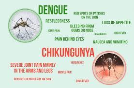 chikungunya dengue symptoms